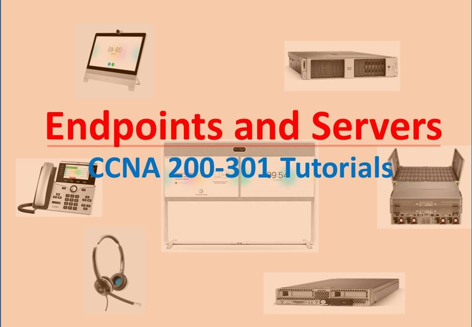cisco endpoints and servers
